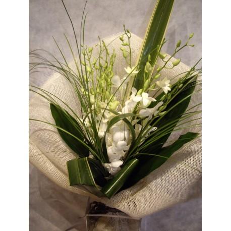 Ramo de Orquideas Dendrobium blancas