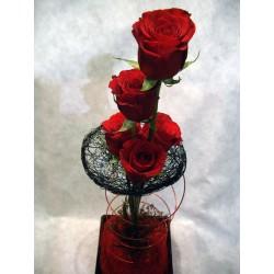 Plato 5 rosas