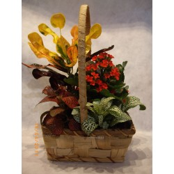 Cesta de plantas pequeña